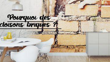 PLATRERIE: Pourquoi des cloisons briques ?